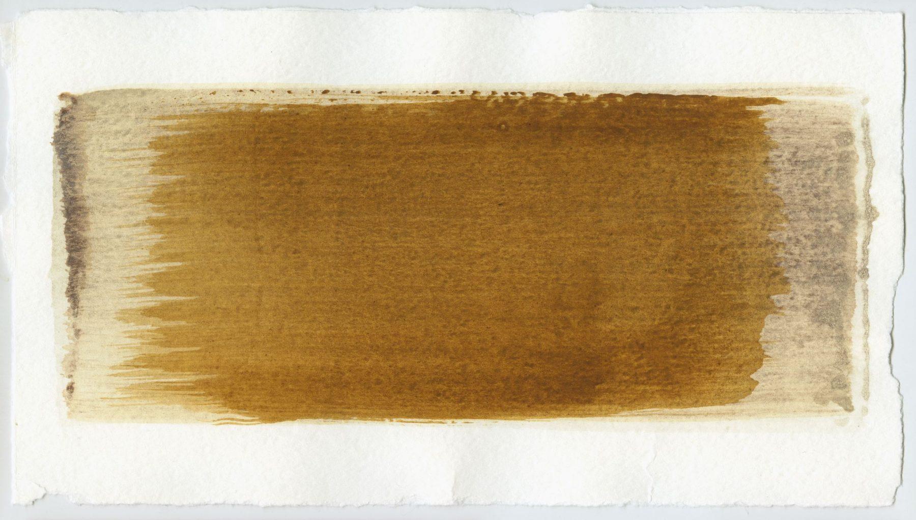 Brush stroke no. 50 - Selfmade pigment: IJzeroer gebrand, Boekels grijs, Mortelse goudoker